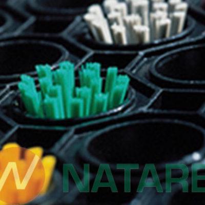 Ringmat Octomat - Wkładki Szczotkowe (zestaw 10 sztuk)